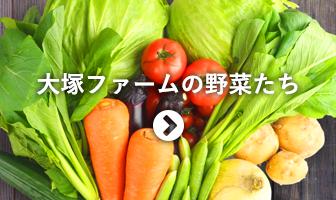 大塚ファームの野菜たち